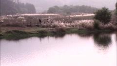 Landscape of Gwangju-si, Korea Stock Footage