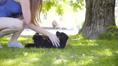 Female person teasing cute puppy outside in lawn 4K Stock Footage