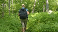 Man walking in forest . Hiking trekking through dense nature on Russia. Healt Stock Footage