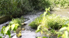 Waste water sewage pollutes river Stock Footage