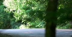Boy rollerblading on the road - stock footage