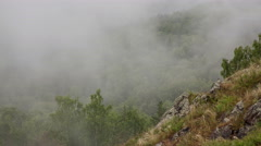 morning mist covers the valley of the Yenisei River - stock footage