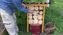 Gardener filling insect hotel with straw Stock Footage