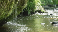 Slow motion of spring waterfall dribbling from moss Stock Footage