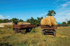 Bales of hay on a trailer - stock photo