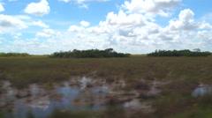 Shark Valley Florida Everglades stock video 4k - stock footage