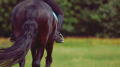 Young woman riding horse on ranch Stock Footage