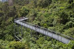 Southern Ridges Canopy Walk, Singapore Stock Photos