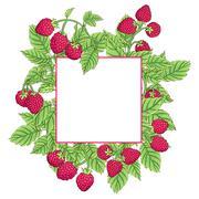 Frame of raspberries Stock Illustration