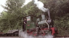 Driver and his narrow gauge steam train on leafy British railway Stock Footage