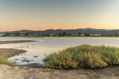 Wetland at Oropos in Greece. A beautiful touristic destination. - stock photo