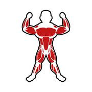 Muscle man icon. Bodybuilder design. Vector graphic Stock Illustration