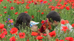 Happy baby child with parents relaxing in red poppies field, play, smile Stock Footage