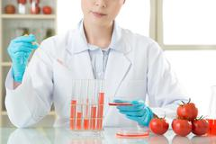 Female scientist develop and test all of genetic modification food Stock Photos