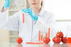 if you not sure about gmo food, do your home work - stock photo