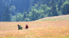 Couple of farmers gathering harvest on yellow field close green forest Stock Footage