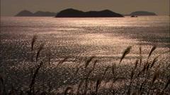 Sunset in Jindo-gun, Jeollanam-do, Korea Stock Footage
