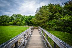Boardwalk trail at Odiorne Point State Park, in Rye, New Hampshire. Kuvituskuvat