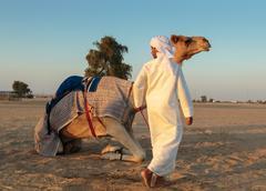 Arab boy with a camel on the farm Stock Photos