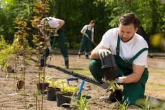 Gardener  taking the flower from the pot - stock photo