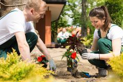 Gardeners planting red flowers - stock photo