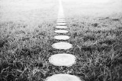 Vertical black and white forest path footway background - stock photo
