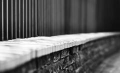 Horizontal black and white dramatic fence bokeh background Stock Photos