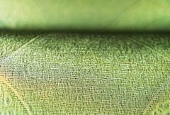 Horizontal vivid green fabric bokeh background Stock Photos
