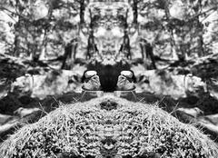 Horizontal vibrant vivid black and white stones spiritual balanc Stock Photos