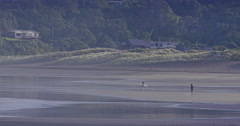 Surfer stretching on the beach at piha, auckland, New Zealand Stock Footage