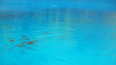 Beautiful refreshing blue swimming pool water Stock Footage