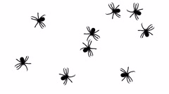 Swarm of spiders, CG animated silhouettes on white, seamless loop Stock Footage