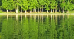 Green Tree Forest Reflection Abstract In Water Lake - stock footage