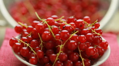 Red currant berry rotation Stock Footage