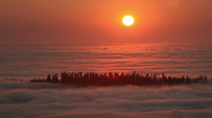 Sun Setting into Pacific Ocean Fog in Redwood NP, CA Stock Footage