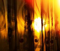 Horizontal vivid sunset curtains with light leak background Stock Photos