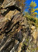 Vertical vivid Norway rock mountain texture composition with tre Stock Photos
