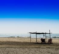 Horizontal vivid man meeting bright morning at sandy beach lands Stock Photos
