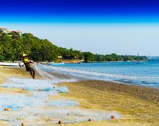 Horizontal vivid vibrant Indian fisherman fishing net background Kuvituskuvat