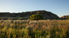 Time lapse - sunrise over grass near Missouri river blowing in breeze Stock Footage