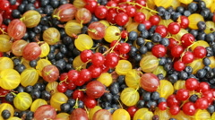 Many different berries Stock Footage