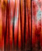 Dracula vintage red curtains Stock Photos
