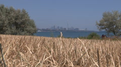 Severe drought in downtown Toronto Stock Footage