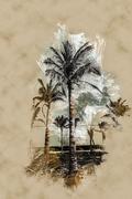 Palms against blue sky Stock Illustration