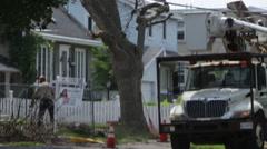 Arborists cutting down tree in Ottawa Ontario - Emerald Ash Borer Stock Footage