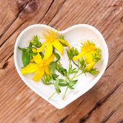 Homeopathy and cooking with St John's wort Stock Photos