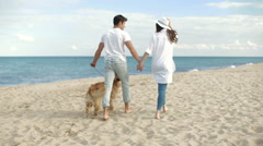 Couple walking with dog on the beach - stock footage