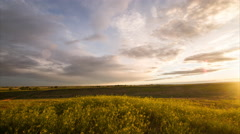 Time lapse - Golden sunrise over golden grass and grey clouds at morning Stock Footage