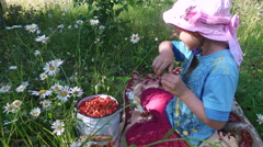 Girl child eats wild strawberry on the meadow. Stock Footage