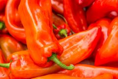 Red chili pepper high contrast background Stock Photos